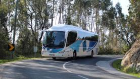 Lançada petição para passes de transportes públicos a 40 euros entre o Oeste e Lisboa
