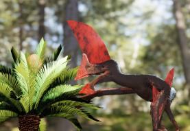 Paleontólogo do Museu da Lourinhã integrou estudo sobre o mais completo fóssil de pterossauro do Brasil