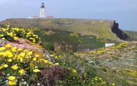 LIFE Berlengas entre finalistas do Prémio Europeu Natura 2000