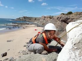 Ninho de dinossauro carnívoro retirado da Praia do Caniçal pelo Museu da Lourinhã