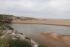 Análises à água do Rio Grande pedidas pelo PSD/Lourinhã revelaram contaminação fecal