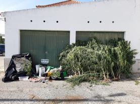 Detidos dois homens no concelho da Lourinhã por tráfico de estupefacientes e arma proibida