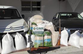 Oeste: GNR deteve quatro pessoas por furto, posse de armas e munições proibidas
