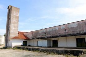 Bombarral: Quinta Ciência Viva da Pêra Rocha vai funcionar nas antigas instalações do IVV