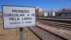 OesteCIM quer passes ferroviários na Linha do Oeste também a 70 e 80 euros por mês para Lisboa