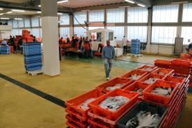 Lotas do Oeste participam na oferta de pescado fresco pela empresa Docapesca