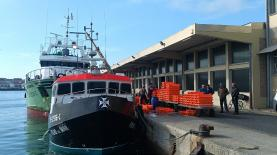 Docapesca vai reabilitar cais de estacionamento e abastecimento no Porto de Peniche