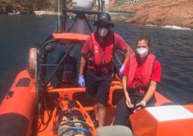 Mulher de 59 anos resgatada com ferimentos após sofrer queda nas Berlengas