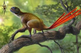 GEAL - Museu da Lourinhã organiza 9ª edição do Concurso Internacional de Ilustração de Dinossauros