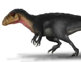 Descoberta nova espécie de dinossauro carnívoro nas arribas da Lourinhã e de Torres Vedras