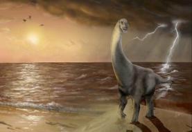 Revelada nova espécie de dinossauro saurópode descoberta no concelho da Lourinhã