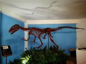 Museu da Lourinhã apresentou em dia de aniversário o primeiro dinossauro português impresso em 3D