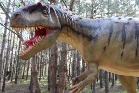 Abertura do espaço de investigação paleontológica na Lourinhã