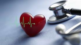 Fundação Portuguesa de Cardiologia lança revista 'Coração em Forma'