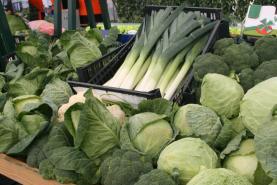 COVID-19: CAP lança serviço de apoio aos agricultores para garantir produção nacional