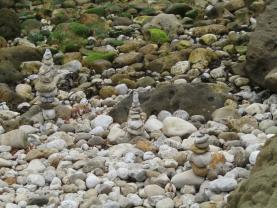 Instituto da Conservação da Natureza procura solução para mariolas em áreas protegidas
