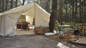 Novo espaço de aventura para os pequenos exploradores: Dino Parque da Lourinhã abre 'Paleo Camp'