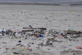 Aplicação tem mais de 23 mil registos de lixo marinho nas praias em seis meses