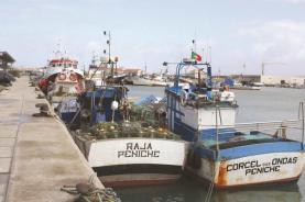 Organizações ibéricas de armadores reuniram em Peniche para exigir aumento da quota de pesca da sardinha