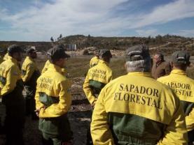 OesteCIM celebra Dia Nacional do Sapador Florestal com a realização de seminário regional
