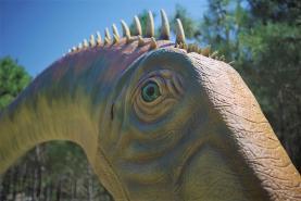 Dino Parque da Lourinhã: maior dinossauro alguma vez visto em Portugal está a chegar