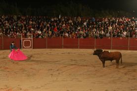 Idade mínima para assistir a touradas passa de 12 para 16 anos